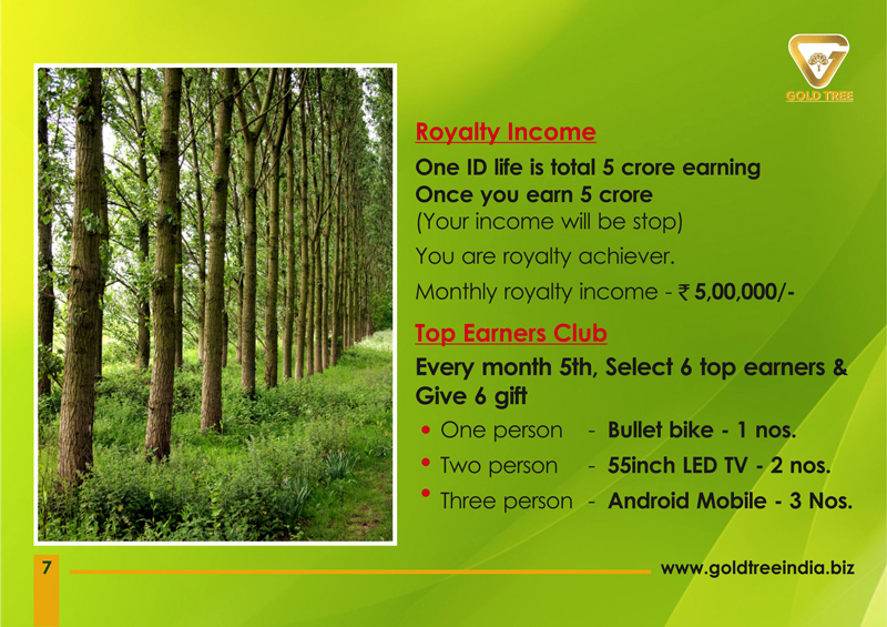 Brochure Designer in Chennai - Gold Tree Eco Wealth India Private Limited, Vadapalani, Chennai
